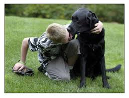 autistic boy and dog